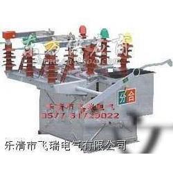 厂商直销ZW43-12,ZW43柱上真空断路器图片