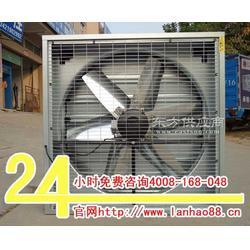 大排气扇蓝昊工业大换气扇图片