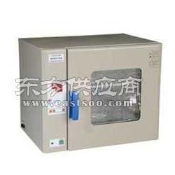 博迅定时超温报警电热鼓风干燥箱GZX-9240MBE图片