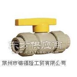 供应各种钢芯PPR双活接球阀图片