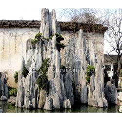 河南天瑞园林景观工程、龟纹石假山工程、濮阳龟纹石假山图片