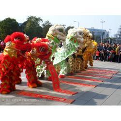 飞鸿舞狮文化、舞狮代理、尉氏县舞狮图片
