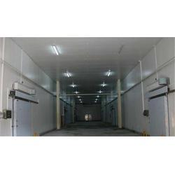专业冷库安装设计|鑫鑫制冷服务(在线咨询)|河东冷库安装图片