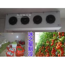 水果保鲜冷库安装,平凉冷库工程建造图片