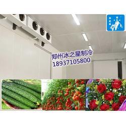 阿拉尔冷库专业安装,吐鲁番小型冷库安装图片