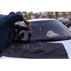 太原晋通汽车玻璃-太原汽车玻璃划痕修复-汽车玻璃图片
