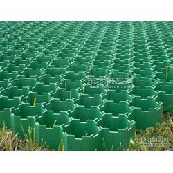 草坪铺装植草格图片