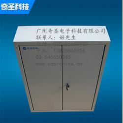 广州奇圣(图)|IP66电箱生产|IP66电箱图片