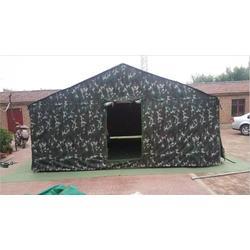 迷彩帐篷 单人|齐鲁帐篷 挡风(在线咨询)|济宁迷彩帐篷图片