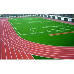 苏州塑胶跑道、南京雅酷塑胶跑道、塑胶跑道保养图片