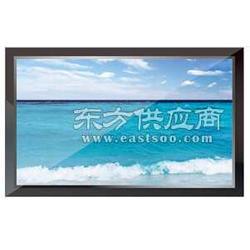 TCL 24寸高清液晶監視器圖片