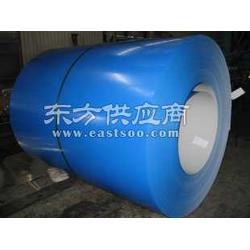 马钢TDX51DZ海蓝彩涂卷图片