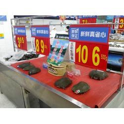 云南团鱼一斤多少钱-云南团鱼(华乙甲鱼)图片