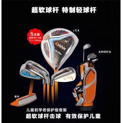 高尔夫球杆,大连高尔夫球杆,私人订制(查看)图片