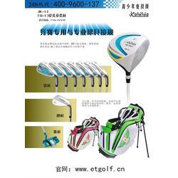 高尔夫球杆(图)_儿童高尔夫球杆如何挑选_儿童高尔夫球杆图片