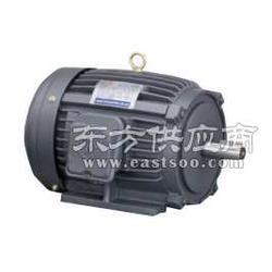 亏本清仓台湾群策群力C05-43B0数控机床专用液压泵电机3.75KW电机图片