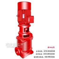 XXD型电动消防泵图片