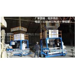 定量包装机木炭颗粒灌包机DCS-D2060P图片