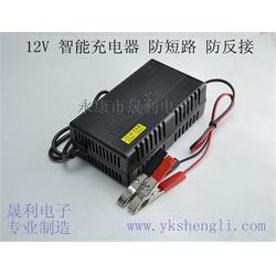 晟利电子厂实惠、蓄电池充电器报价、天津蓄电池充电器图片