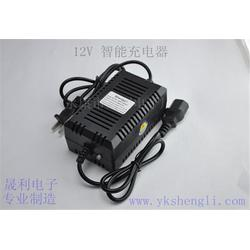 晟利电子厂经济实惠|玩具充电器哪家好|上海 玩具充电器图片