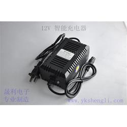 晟利电子厂质量过硬_玩具充电器商_辽宁玩具充电器图片