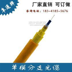 全国供应12芯室内单模分支光缆GJBFJV-12B1可做分支光纤跳线图片