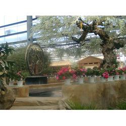 农业生态园,农业生态园建设,枫叶景观设计(认证商家)图片