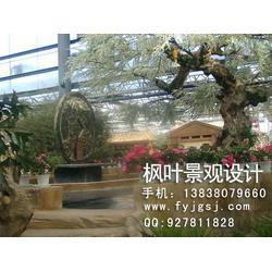 生态酒店设计公司,生态酒店设计,枫叶景观设计(查看)图片