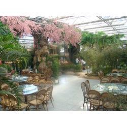 枫叶景观设计,餐厅生态园设计,生态园设计图片