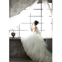 枫叶景观设计、韩国婚纱摄影实景、浙江婚纱摄影实景图片