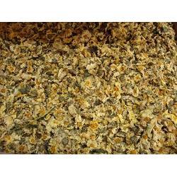 菊花烘干机|金阳干燥|菊花烘干机生产厂家图片