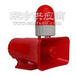 行车声光电子报警器/BC-809图片