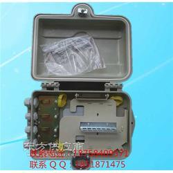 SMC12芯光纖分纖箱-生產廠家圖片