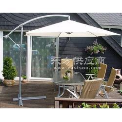 供应庭院伞图片