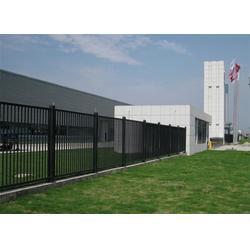 泰安世通铁艺生产公司(图)-安全护栏 窗户-肥城安全护栏图片