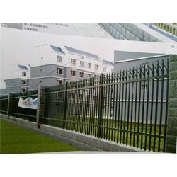 鋅鋼護欄 泰安市-世通鐵藝(在線咨詢)護欄圖片