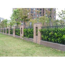 泰安围墙大门-围墙-世通铁艺(查看)图片