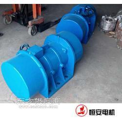 HAN-A 40-4 2.2KW卧式振动电机图片