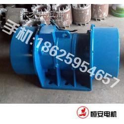 HAN-A 280-6 振动电机 卧式 厂家推荐图片