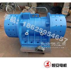 HAN 50-6 振动电机图片