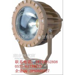 KHT96系列防爆高效LED投光灯IIC详情图片