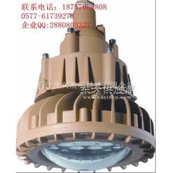 隔爆型LED防爆灯30W40W图片