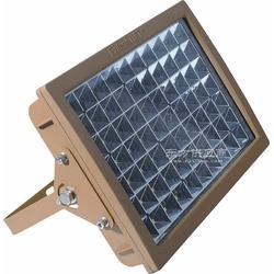 97系列 50W 防爆高效节能免维护LED泛光灯图片