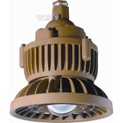 专业生产20W免维护LED高效节能防爆灯 集成20WLED防爆投光灯质量图片