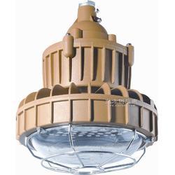 20W免维护LED防爆灯 30WLED防爆灯图片