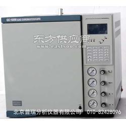 天然气气相色谱仪厂家,GC6890天然气色谱分析仪,普瑞仪器图片