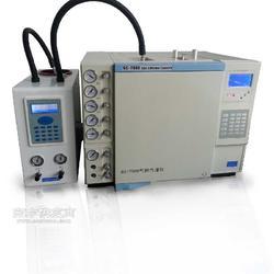 国产气相色谱仪厂家,普瑞气相色谱仪,国产色谱仪器GC图片