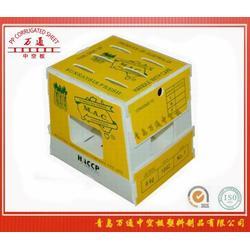 中空板芦笋包装箱,钙塑箱,中空板图片