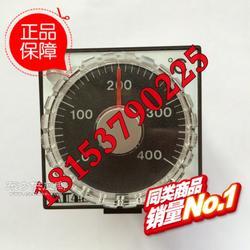 AT48A温控表图片