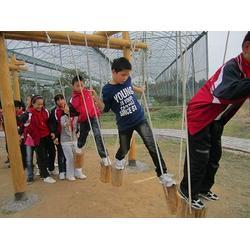 体能乐园简介_体能乐园_13676918873(图)图片